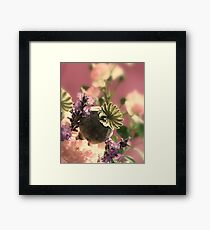 Power of Light Framed Print