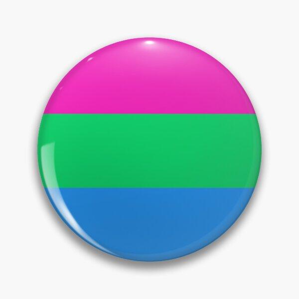 Polysexual Pride Large Flag Print  Pin