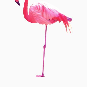 Pink Flamingo by WAMTEES