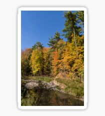 Autumn on the Riverbank - the Changing Forest Sticker