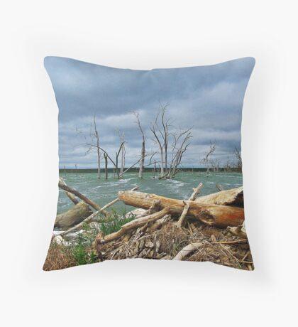 Driftwood Shores Throw Pillow