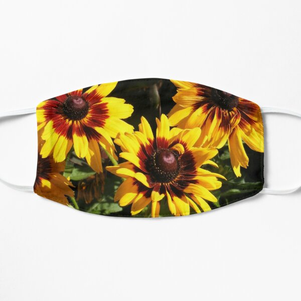 YELLOW AND RED SUNFLOWERS, SEEDS AND PETALS Mask