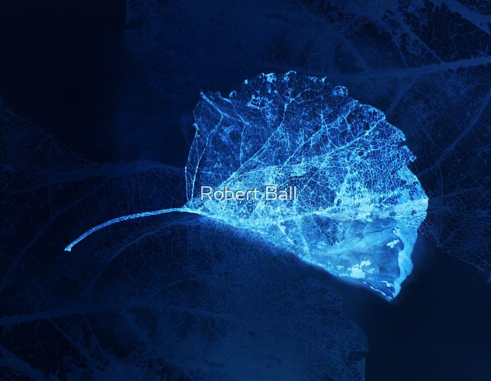 Blue Leaf by Robert Ball