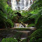 Wombelano Falls  by Donovan Wilson
