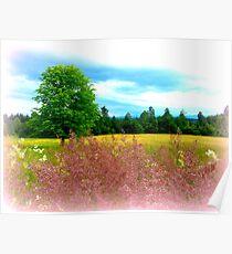Summer hues Poster
