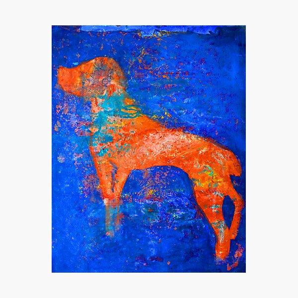 Abstract Spaniel Dog Photographic Print