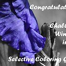 Selective Coloring Challenge Winner Banner by MissyD