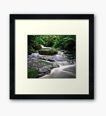 Leura Creek Allure Framed Print