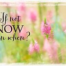 If Not Now on a Summer's Day by Marilyn Cornwell