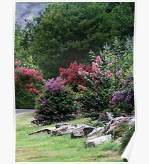 Summer At Honor Heights Park Poster