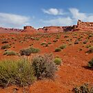 Valley of the Gods - Floor of the desert by Owed To Nature