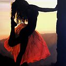 Sundance by Shari Cerney