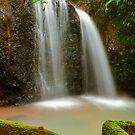 Teresa Falls by Phil Thomson IPA