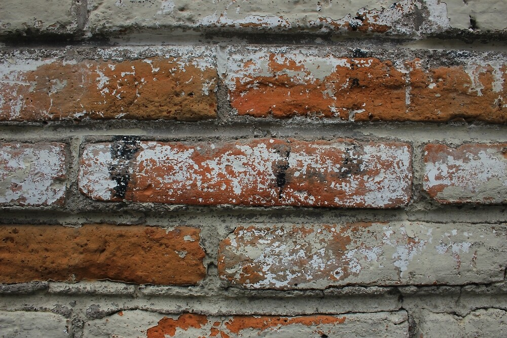 White and Red Brick in a Wall by rhamm