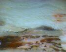 The Soft Land by Stephanie Bateman-Graham