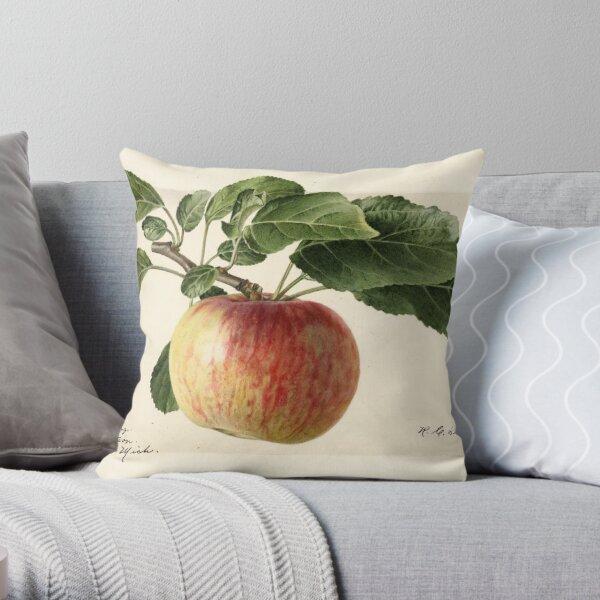 Vintage Oldenburg Apples Print Throw Pillow