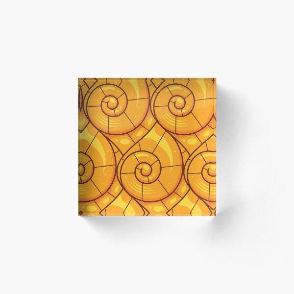 Gold Nautilus Seashell Acrylic Block