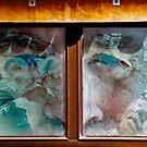 Look In Any Window by Richard Earl