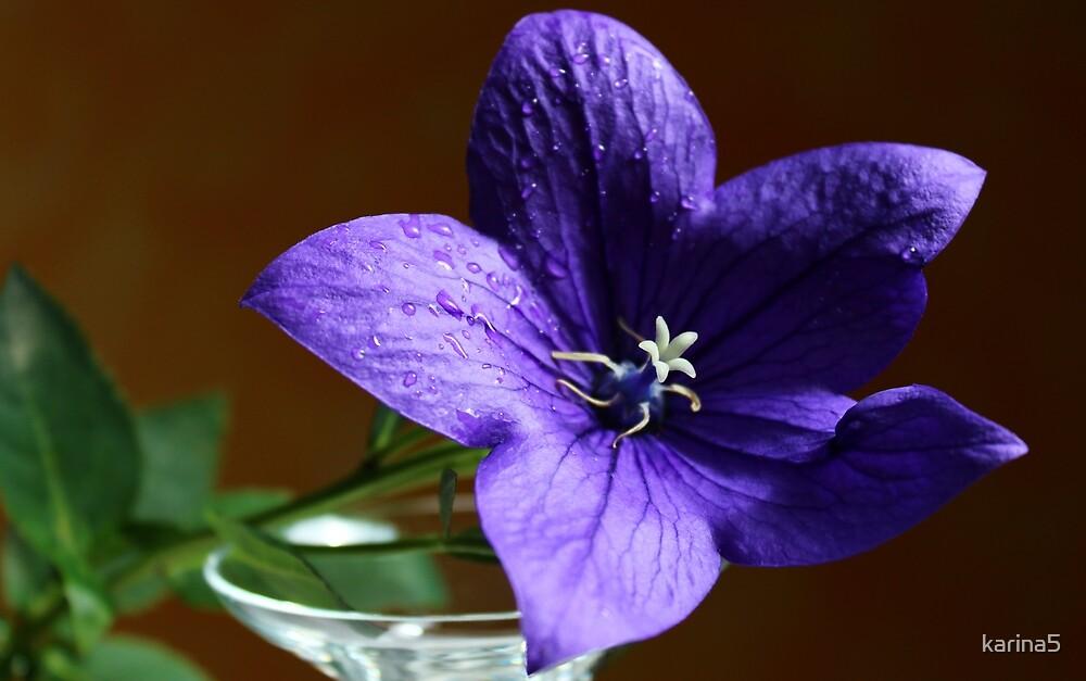 Purple Bell Flower by karina5
