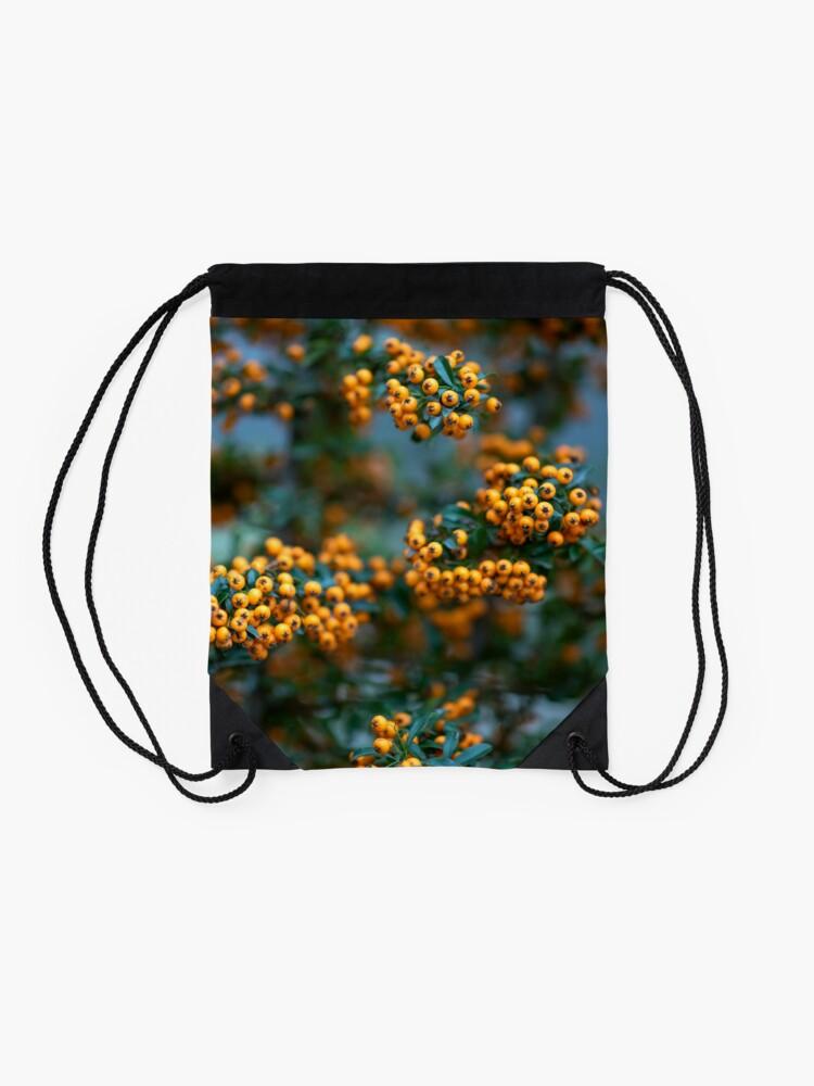 Alternate view of Rowanberry Drawstring Bag