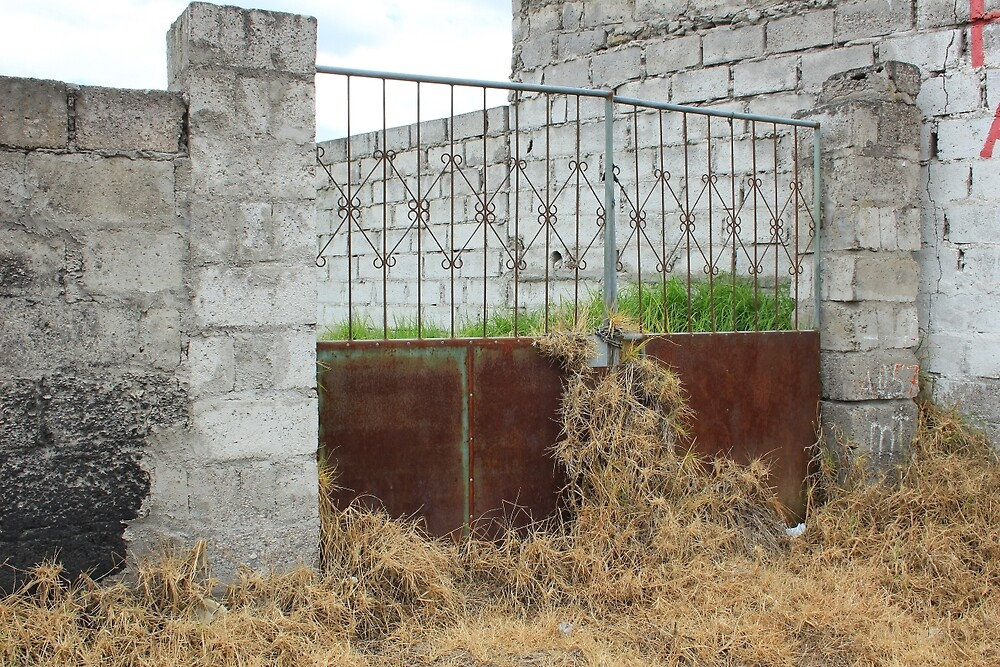Overgrown Rusted Gate by rhamm