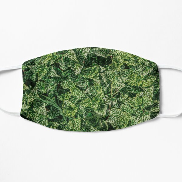 Green and White plant  Mask