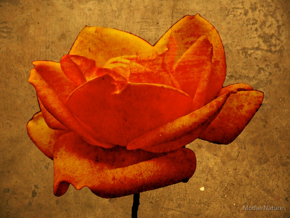 Enigma Of The Yellow Rose #5 by MotherNature