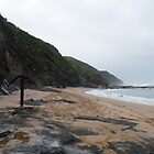 """The dramatic """"Wreck Beach"""" Great Otway N.P. by DianneLac"""