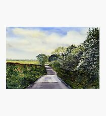 Woldgate, Late Spring Photographic Print