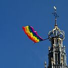 Celebrating Diversity by Hans Bax