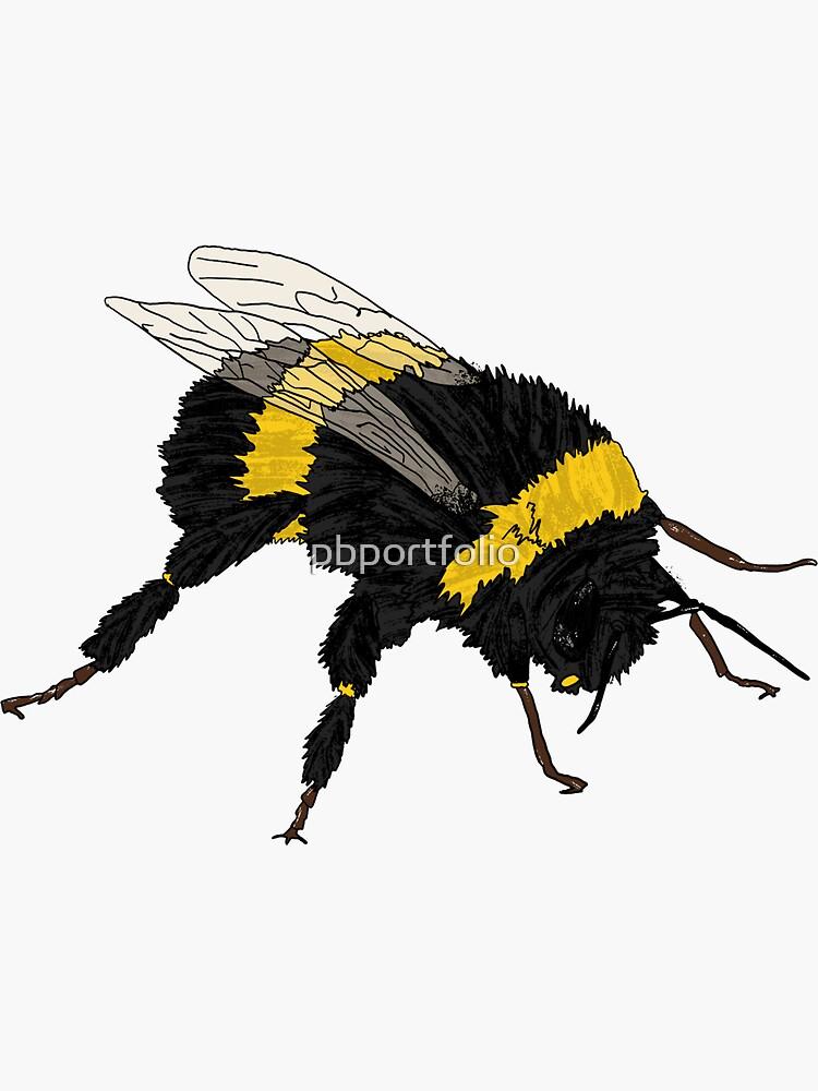 Bumble Bee by pbportfolio