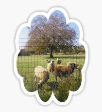 sheepish tree Sticker