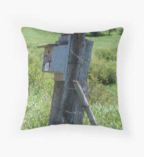 BLUEBIRD HOUSE NEAR BOZEMAN, MT Throw Pillow