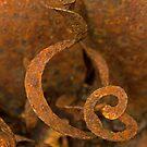 Rusted Stamen by Lynn Gedeon