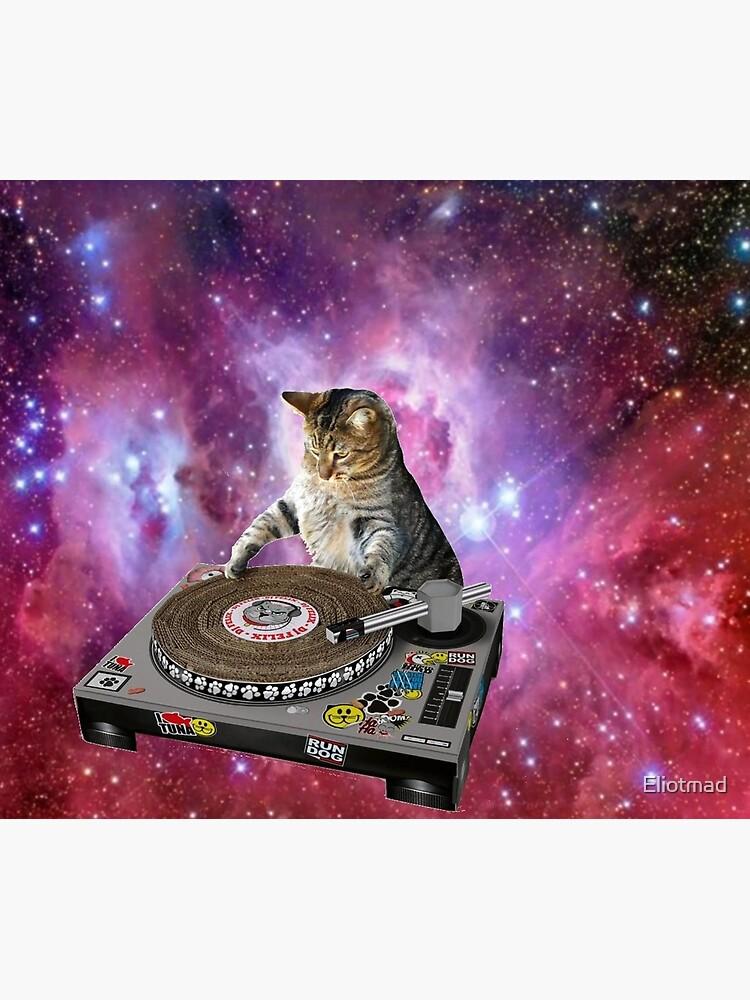 DJ Raum Katze von Eliotmad