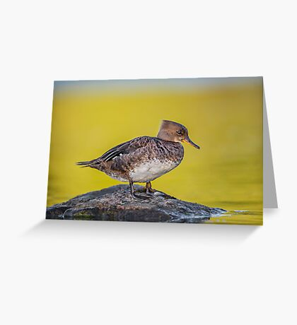 Haven Rock Greeting Card