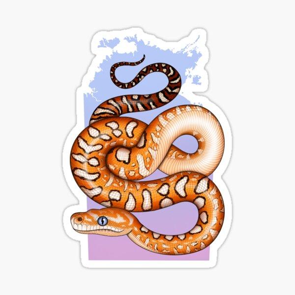 Centralian Carpet Python NT Sticker