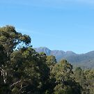 Untitled- Mt Buller 1 by claire-virgona