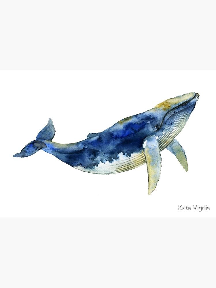 Blue Whale by kate-vigdis
