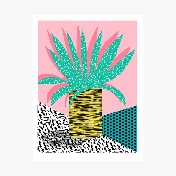 In the Mix - potted house plant tropical garden container garden art print botanical natural vegetarian palm dorm room art Photographic Print