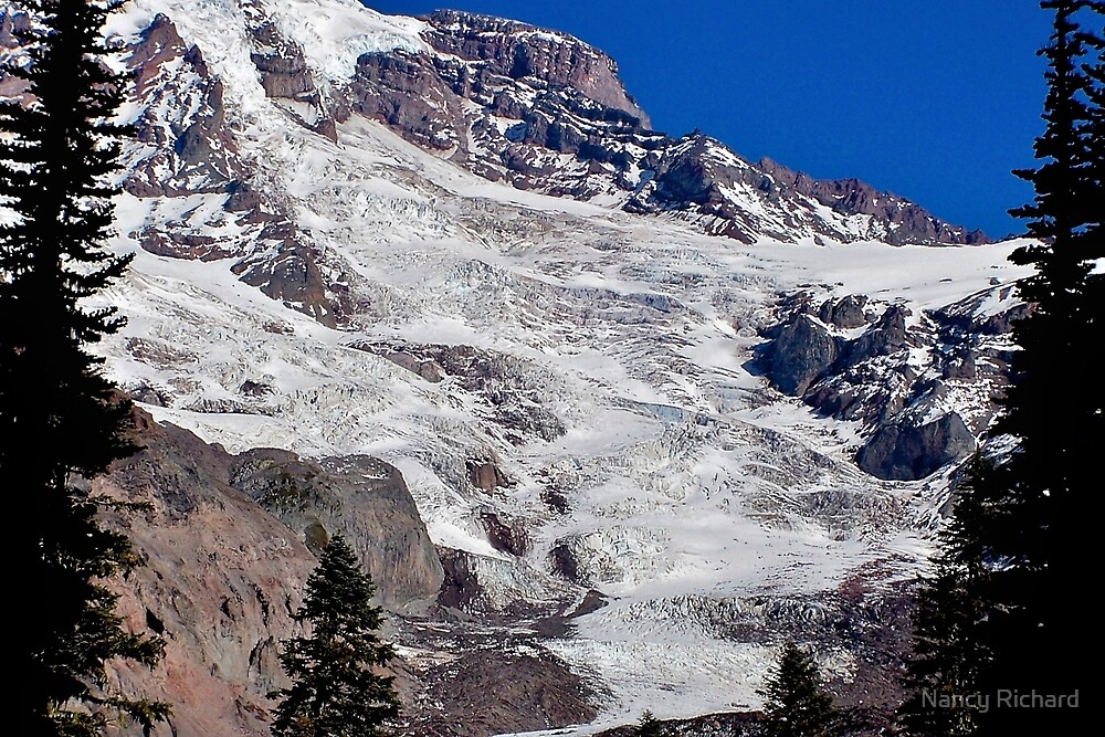 Nisqually glacier by Nancy Richard
