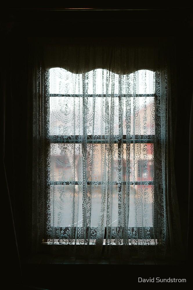 Window Lace by David Sundstrom