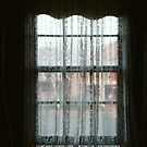 Window Lace by David Sundstrom