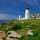 Pemaquid Lighthouse, Maine, USA by Daniel H Chui