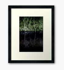 The truth of immortality Framed Print