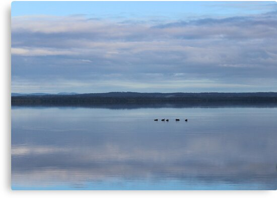 Serenity Lands by Deanna Roberts Think in Pictures
