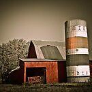 Barn & Silo  by David Owens