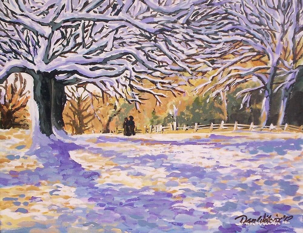 Sunlight in winter by Dan Wilcox
