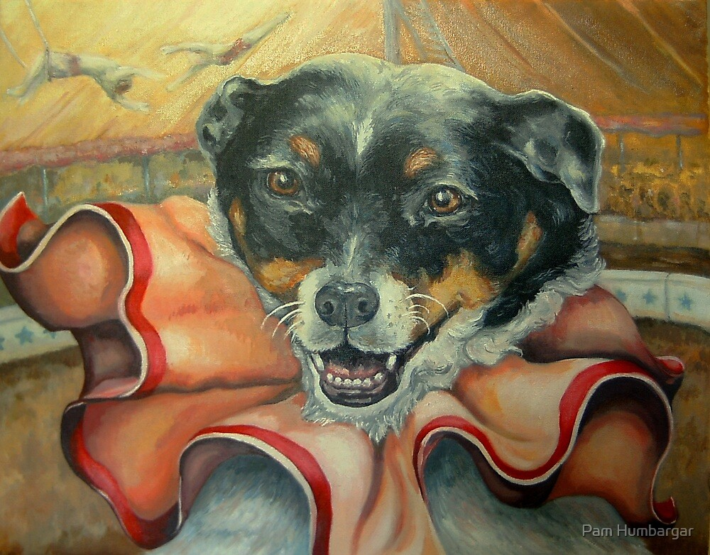 Little Dog Under the Big Top by Pam Humbargar