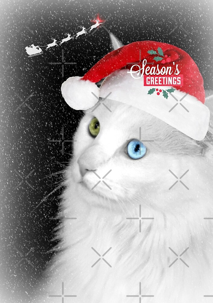 "Delain says ""Happy Holidays"" by Scott Mitchell"